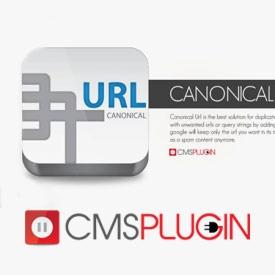افزونه دستیار سئو برای حل مشکل آدرس های تکراری با Canonical Url